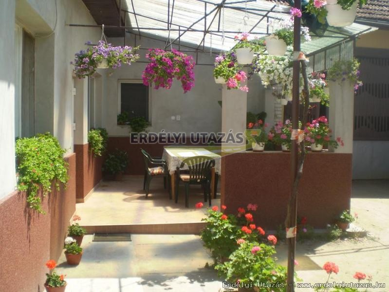 Kitti Guesthouse (12)