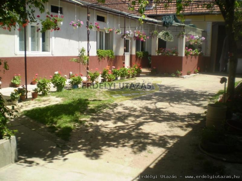 Kitti Guesthouse (11)