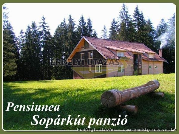 Sopárkút Pension (1)