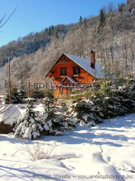 Rustic House (7)